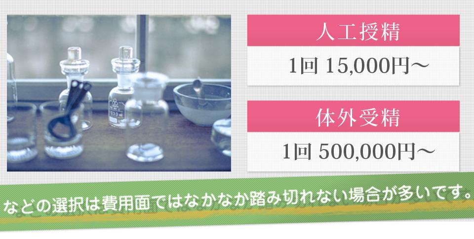人工授精1回15,000円 体外受精1回30,000円~500,000円などの選択はなかなか踏み切れない場合が多いです。